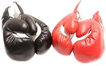 2 Pair Red and Black Corner 8oz Youth Boxing Gloves Set