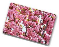 BravoVision Custom the Pink Cherry Blossom Indoor/Outdoor