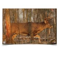 BWC 37481 EZE-Scorer Deer 23x25