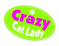 Imagine This 4-Inch by 6-Inch Car Magnet Oval, Crazy Cat
