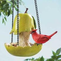 Cardinal On Pear Bird Feeder