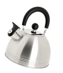Mr. Coffee Carterton Stainless Steel Whistling Tea Kettle, 1