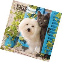 Cats & Dogs 2016 Calendar