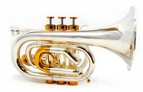 Schiller Centertone Pocket Bb Trumpet - Silver & Gold Plated