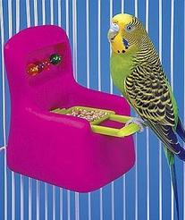 Small Chair Feeder Waterer