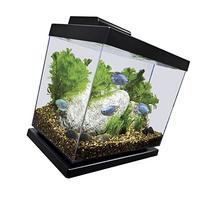 Marineland Classic Aquarium Kit, 4-Gallon