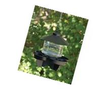 Clear Lantern Bird Bath Waterer