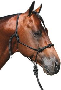 Professionals Choice Equine Nylon Clinician Halter