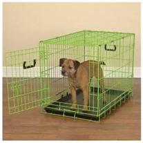 Colorful Wire Dog Crate - Size: Medium / Large , Color: Lime