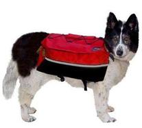 Kyjen Company Outward Hound Backpack X-Large