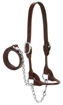 Weaver Leather Dairy/Beef Rounded Show Halter, Brown, Large