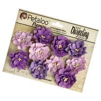 Petaloo Darjeeling Teastained Dahlia Flowers, Purple, 10-