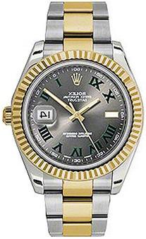 Rolex Datejust Automatic 18kt Gold Bezel Mens Watch 116333