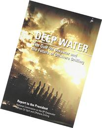 Deep Water: The Gulf Oil Disaster and the Future of Offshore
