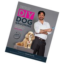 DIY Dog Grooming, From Puppy Cuts to Best in Show: