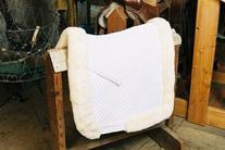 Dressage Saddle Blanket w/ Full Rolled Edge - Full Lining -