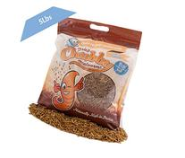 5 Lbs Chubby Dried Mealworms for Wild Birds etc.  Free