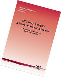 Efficiency Analysis: A Primer on Recent Advances