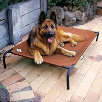Coolaroo Elevated Indoor Outdoor Large Pet Bed for Large or