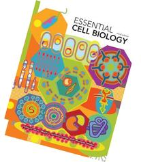 Essential Cell Biology 3rd Edition  3e By Bruce Alberts 2009