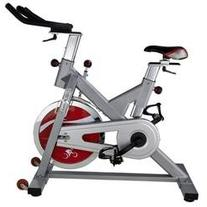 Exercise Bike by Sunny Health and Fitness - Silver