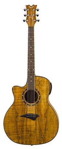 Dean Exotica Acoustic-Electric Guitar, SPALTED  Maple