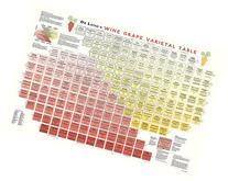 True Fabrications DeLong's Wine Grape Varietal Table Poster