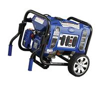Ford FG4050P M Series 4050W Peak 3000W Rated Portable Gas-