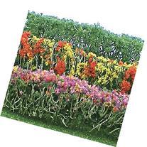 "Flower Hedges,4 Colors 5x3/8x5/8""(8 Multi-Colored"