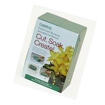 Oasis® Pack of 2 Standard Floral Foam Bricks