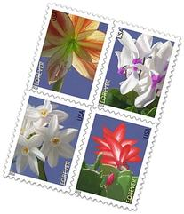 USPS Forever Stamps Winter Flowers Booklet of 20