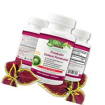 100%120Ct! Forskolin Extract - Natural Coleus Forskohlii -