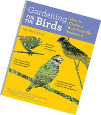 Gardening for the Birds: How to Create a Bird-Friendly