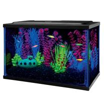 GLO®Fish Starter Kit Aquarium size: 5 Gal