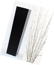 GreenFloralCrafts 204-0341-H73CM Tapered Floor Vase, Natural