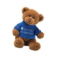 Gund T-shirt Message Teddy Bear Stuffed Animal