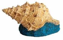 Hydor H2Show Atlantis - Shell Decoration for Aquariums