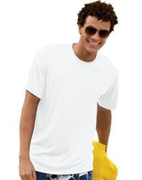 Hanes 4820 Hanes Cool DRI TAGLESS Men's T-Shirt