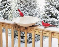 Allied Precision 20 Inch Heated Bird Bath with Hardware