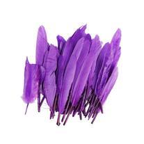50pcs Home Decor Purple Goose Feather