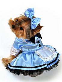 Anit Accessories Home Pets Fancy Dress Apparel Fantasy Alice