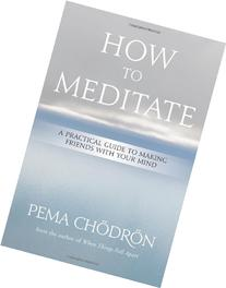How to Meditate: A Practical Guide to Making Friends with
