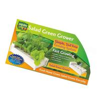 Hydraponic Soil-Free Salad Green Grower with 4 Stacks