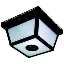 Heathco HZ-4305-BK Light Ceiling Motion 360 Degrees, Frosted