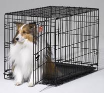 "30"" Crate Dog Training"