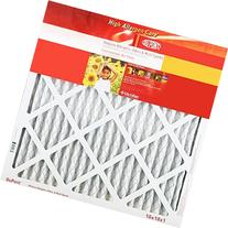 DuPont KB20X21.5X1A High Allergen Care Electrostatic Air