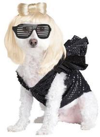Lady Dogga Pet Costume - Large
