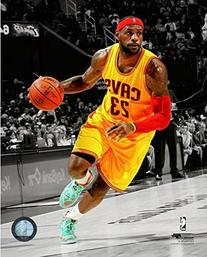 LeBron James 2014-15 Spotlight Action Photo 8 x 10in