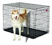 MidWest Homes for Pets Life Stages ACE Double Door Dog Crate