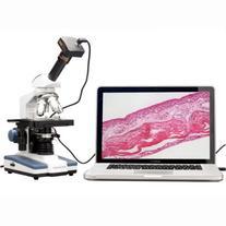 AmScope M620B-3M Digital Compound Monocular Microscope,